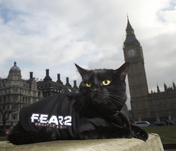 fear_mischief_01.jpg